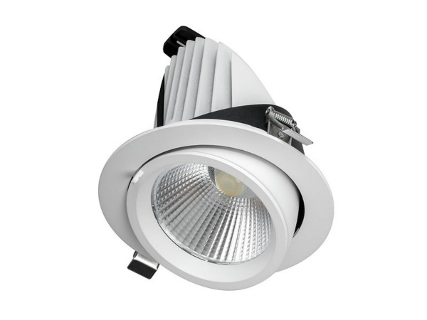 30W LED Gimbal Downlight