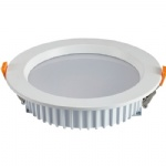 IP65 Waterproof 40W LED Downlight